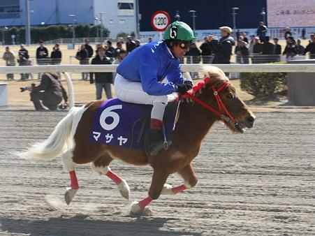 120219ポニーレースin川崎-レース-15