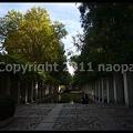 Photos: P2880279