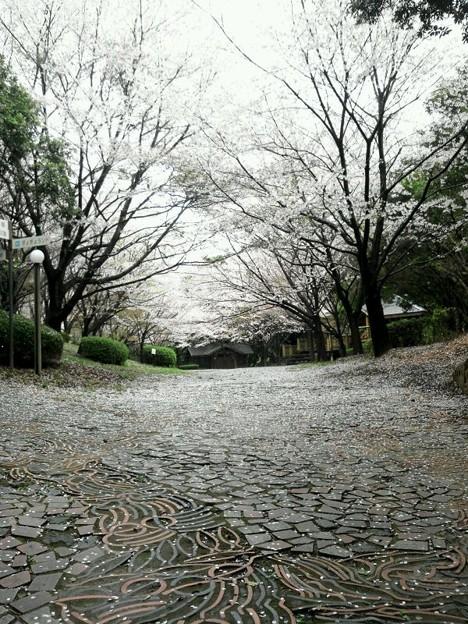 今日の東三河は、雨音で目覚...