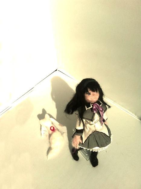 写真: 写真 2