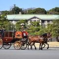 Photos: DSC_2304 宮内庁を背景に