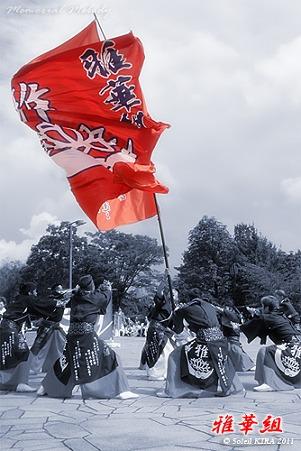 雅華組_18 - ザ・よさこい大江戸ソーラン祭り2011