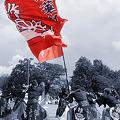 写真: 雅華組_18 - ザ・よさこい大江戸ソーラン祭り2011
