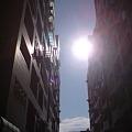 今日はいい天気。