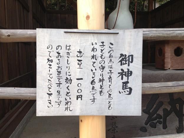 犬山城_36