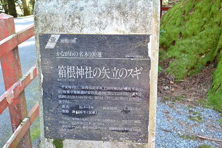 説明@箱根神社[3/29]