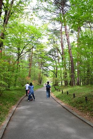 緑の道を行く@森林公園[4/29]