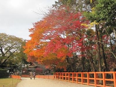 紅葉の上賀茂神社