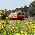 春~小湊鉄道~9