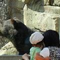 写真: クマと親娘DSCN1264