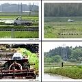 Photos: 軽トラのある風景 ~在庫一掃セール 1~