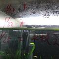 Photos: 2012/01/24/002