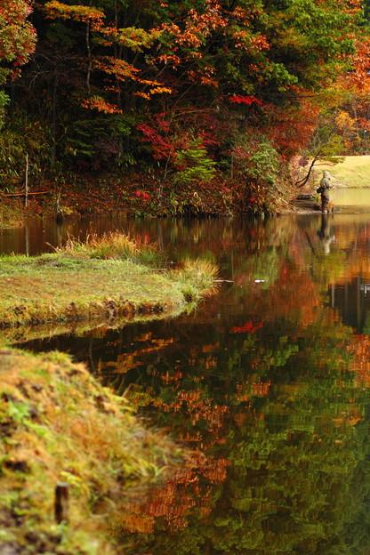 湖に映える紅葉