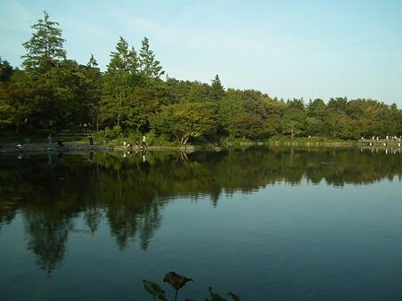 昭和記念公園 672