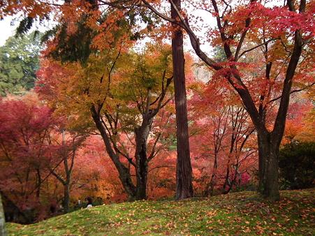 京都2 117