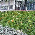 Photos: 寧波、三江口にて2