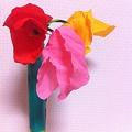 世界で1番美しい花(*^_^*)