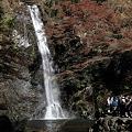 写真: 箕面大滝