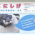 Photos: hirakata110917041
