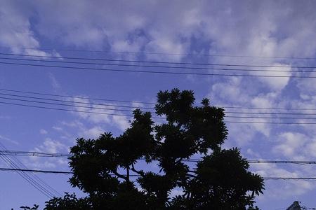 2011-07-22の空