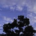 Photos: 2011-07-22の空