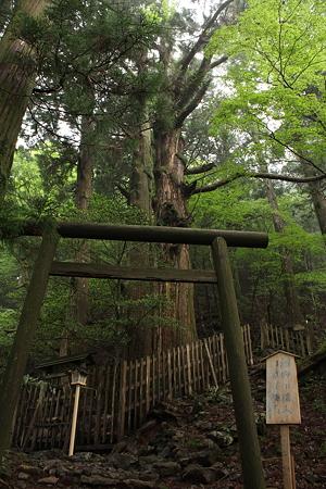 玉置神社・玉石社