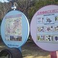 【春のセンバツ】宮崎西高弾丸応援バスツアー9
