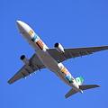 Eva Airways Airbus A330-300