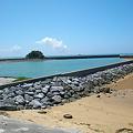 写真: 辺野古の海