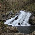 長良川の源流
