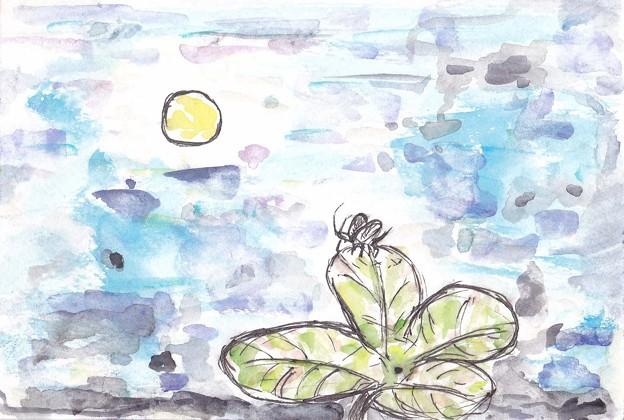 写真: 四葉のクローバーと月と鈴虫