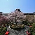 写真: 京都府庁・旧本館21