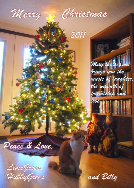 写真: Christmas  with Billy 2011