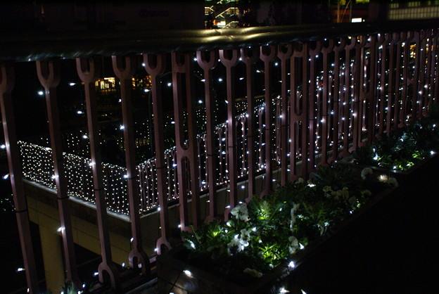 エコエンジェル2011 光る階段