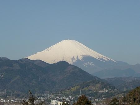 120329-松田山から富士山 (9)