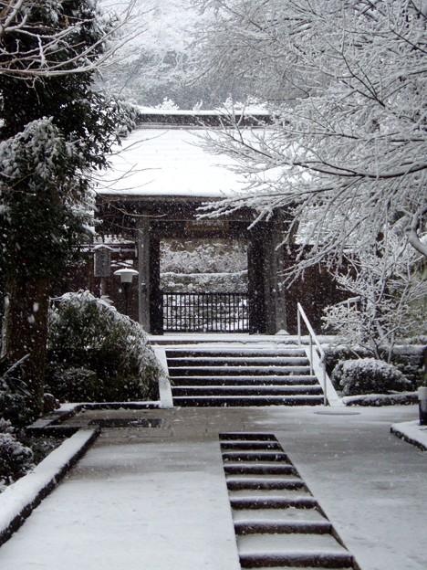 Photos: 円覚寺続燈庵20120229