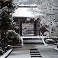 円覚寺続燈庵20120229