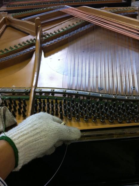 写真: 張弦作業