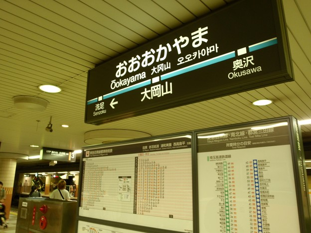 Photos: 大岡山駅 上りホーム 目黒線 駅名標 (2011)