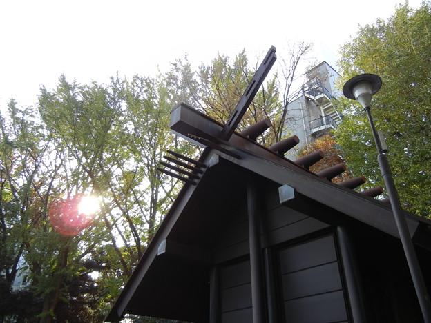本殿-氷川神社 (杉並区高円寺南)