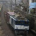 Photos: _MG_8413dpp 蘇我貨物1091レ EF65-1000