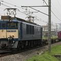 Photos: _MG_0472 EF64-1014 鹿島貨物