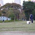 Photos: 校内記録会(最終日)