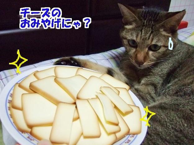 ミツマルさんちのスモークチーズ