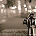 写真: 夜の水飲み NEX-5 SEL30M35