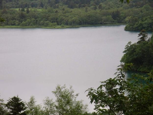 写真: 8_17オコタンペ湖02