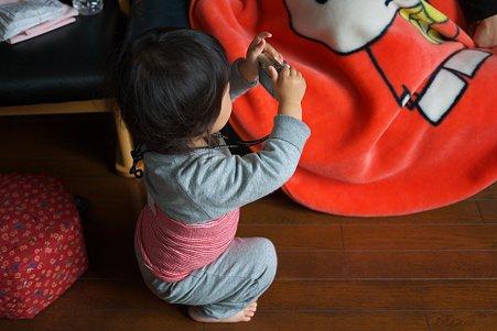 2011.11.10 居間 姫とカメラ