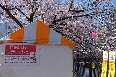 2012.04.09 大岡川桜のプロムナード 屋台