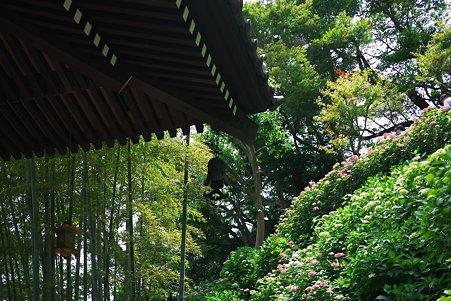 2012.06.06 鎌倉 長谷寺 経蔵から眺望散策路
