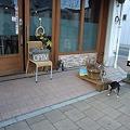 Photos: cafe&dining bar +wan MOLTISH